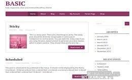 Построение и запуск сайта с темами шаблона Basic