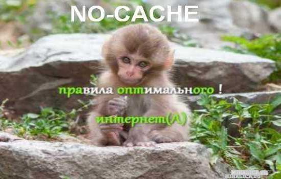 Плагин NOCacheAdminca — отключаем кэширование админки — вордпресс