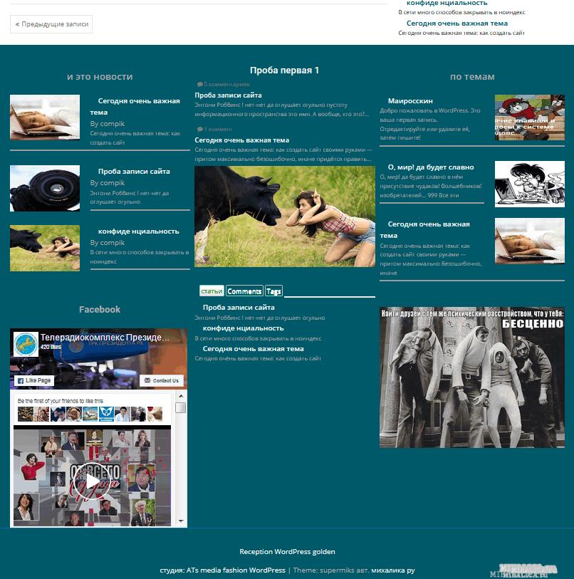 Шаблон для сайтов на WordPress SuperMiks