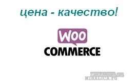 Настройка, использование и удаление виджетов WooCommerce из админки