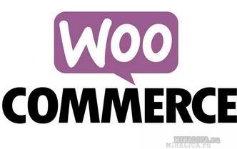 Условные теги woocommerce - наиболее полная подборка, пояснения