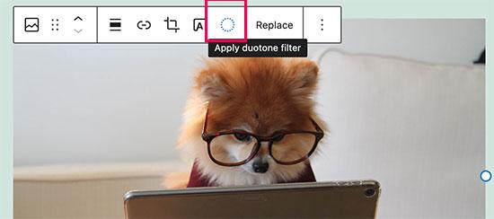 новые двухтональные фильтры для изображений и медиаблоков